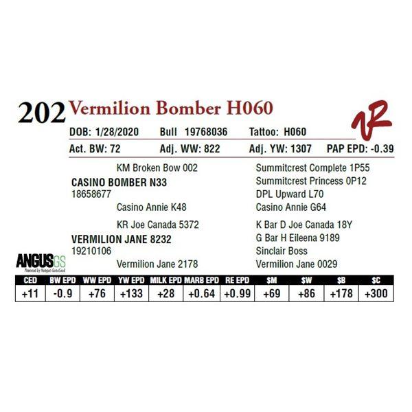VERMILION BOMBER H060