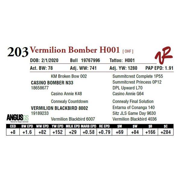 VERMILION BOMBER H001