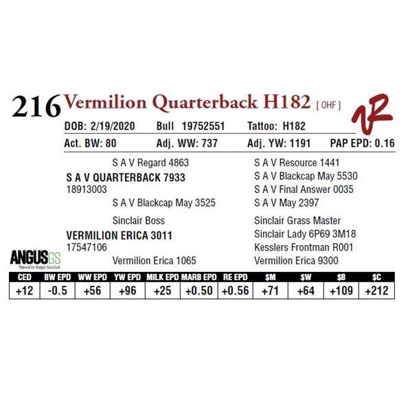 VERMILION QUARTERBACK H182