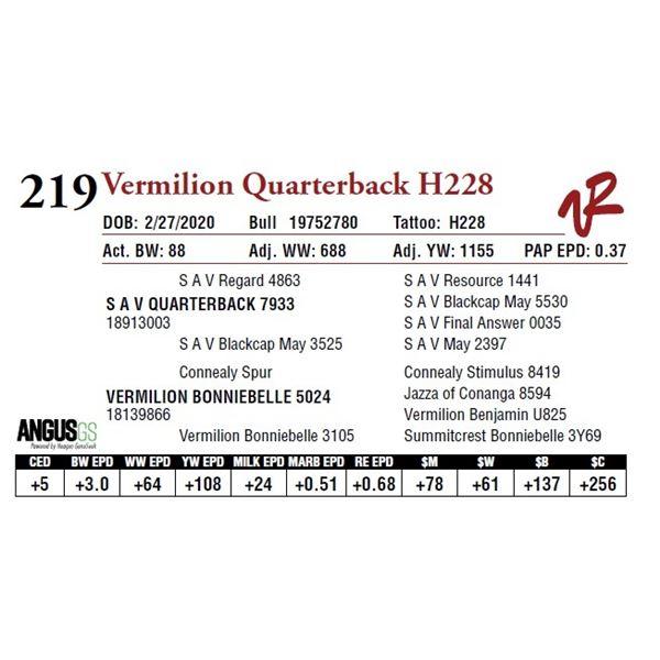 VERMILION QUARTERBACK H228
