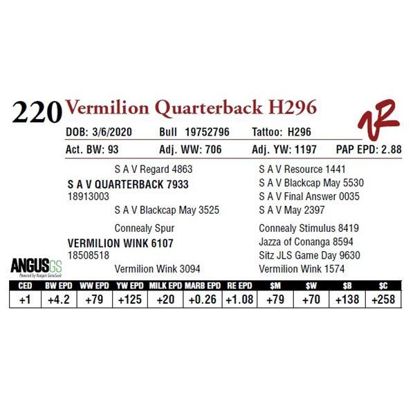 VERMILION QUARTERBACK H296