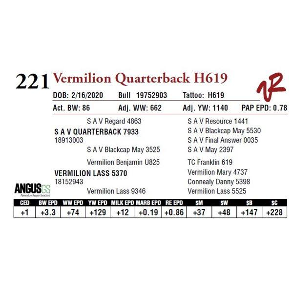 VERMILION QUARTERBACK H619