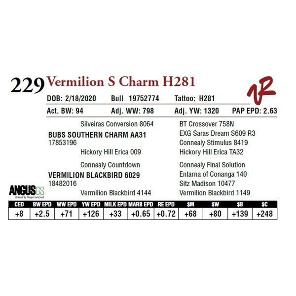 VERMILION S CHARM H281