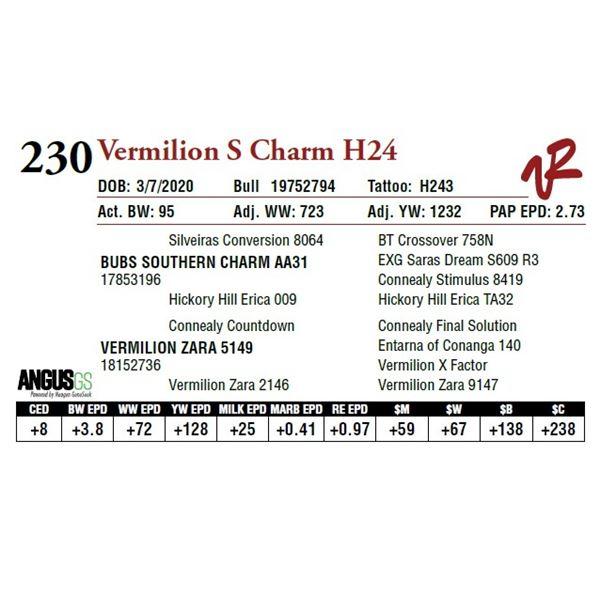 VERMILION S CHARM H24