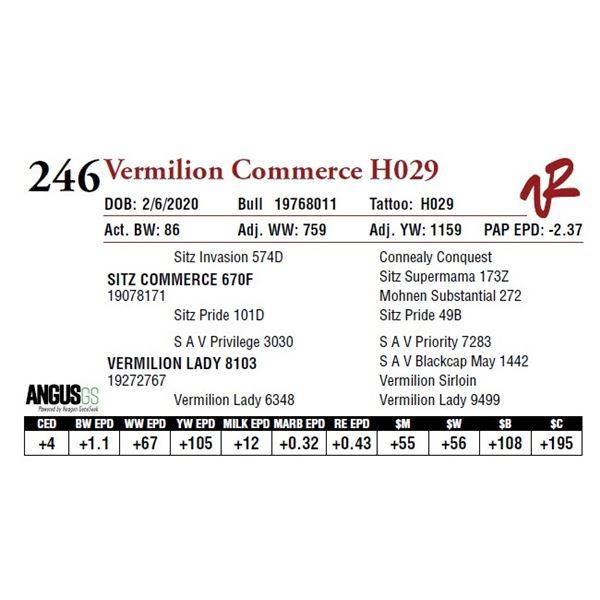 VERMILION COMMERCE H029