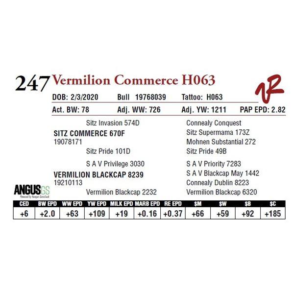VERMILION COMMERCE H063