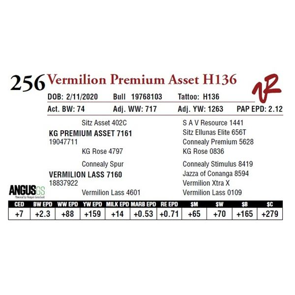 VERMILION PREMIUM ASSET H136