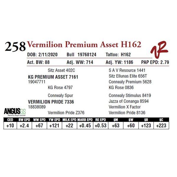 VERMILION PREMIUM ASSET H162