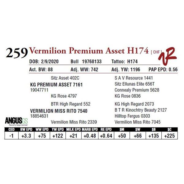 VERMILION PREMIUM ASSET H174