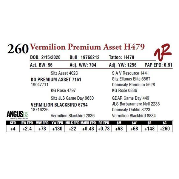 VERMILION PREMIUM ASSET H479
