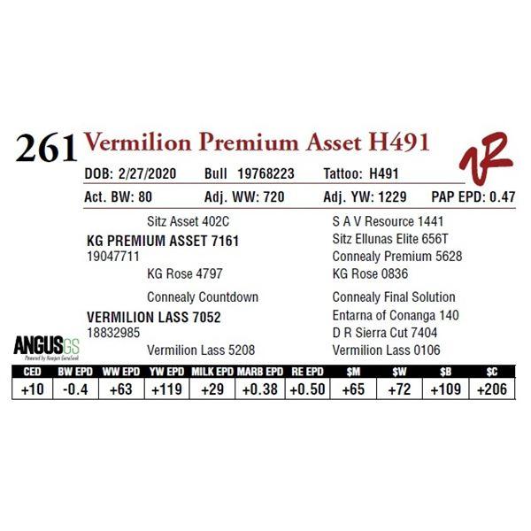 VERMILION PREMIUM ASSET H491