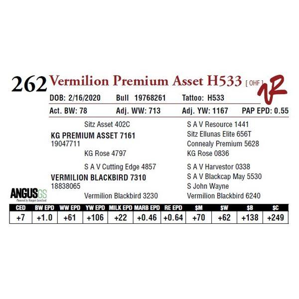 VERMILION PREMIUM ASSET H533