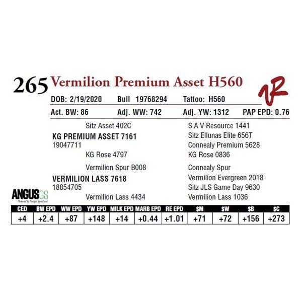 VERMILION PREMIUM ASSET H560