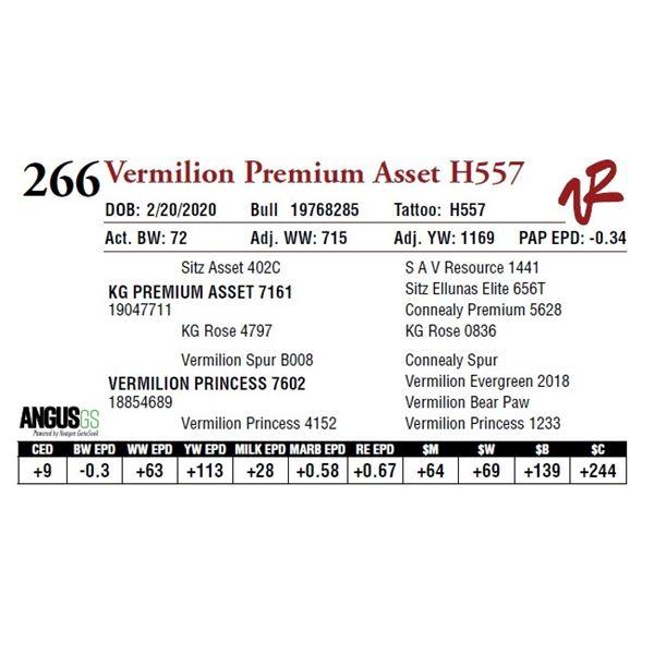 VERMILION PREMIUM ASSET H557
