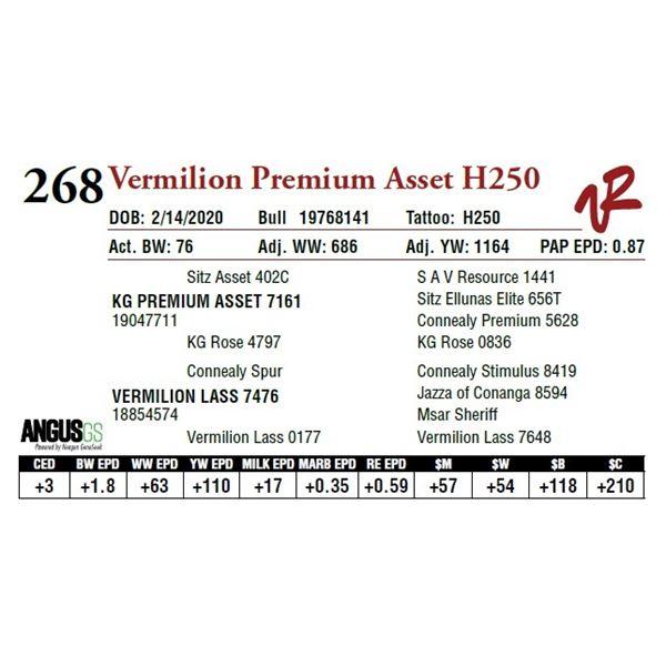 VERMILION PREMIUM ASSET H250