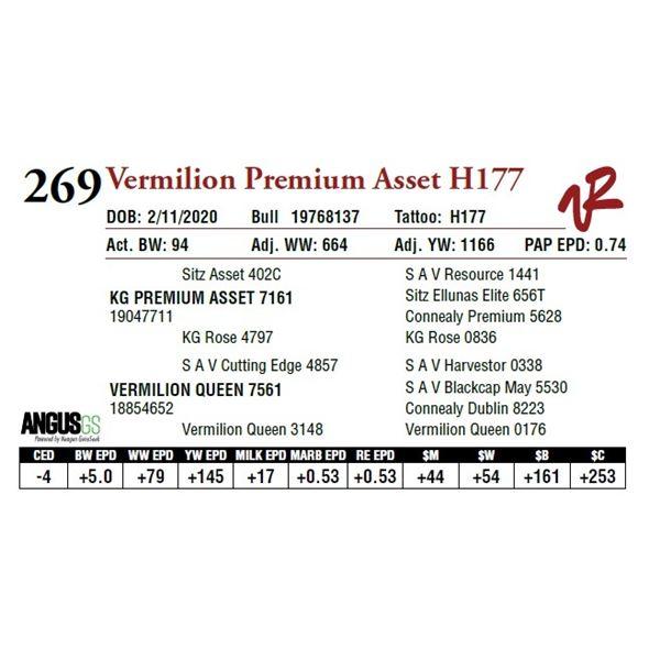 VERMILION PREMIUM ASSET H177