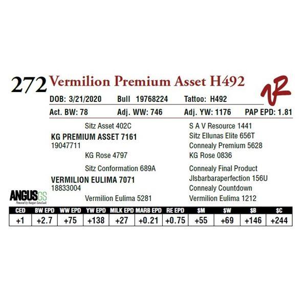 VERMILION PREMIUM ASSET H492