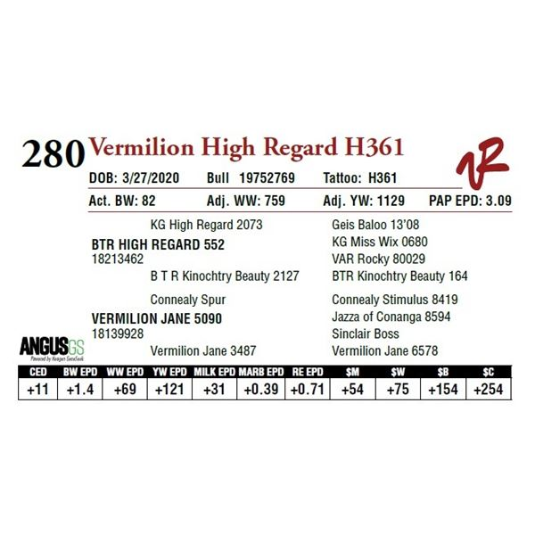 VERMILION HIGH REGARD H361