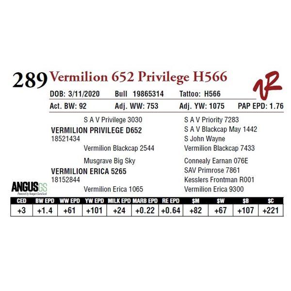 VERMILION 652 PRIVILEGE H566