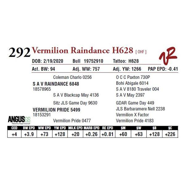 VERMILION RAINDANCE H628