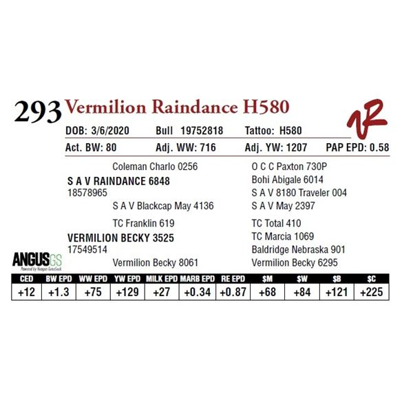 VERMILION RAINDANCE H580