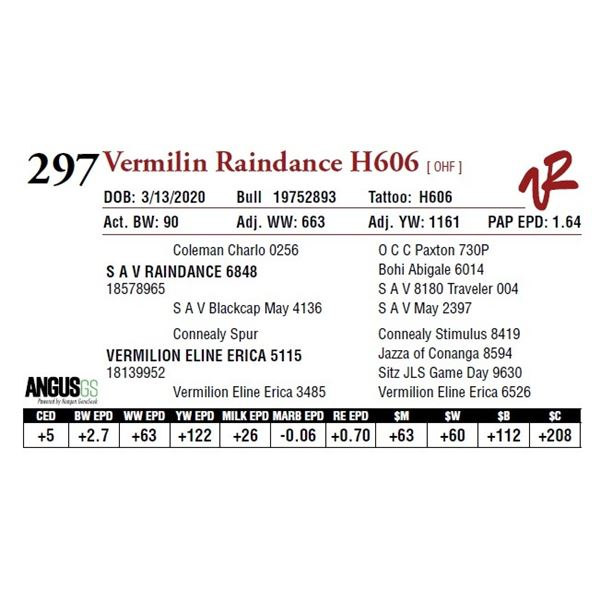 VERMILION RAINDANCE H606