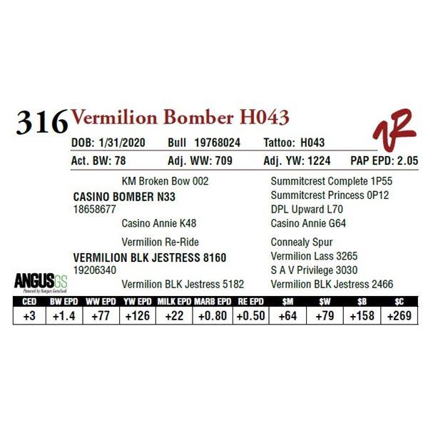 VERMILION BOMBER H043
