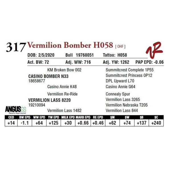 VERMILION BOMBER H058