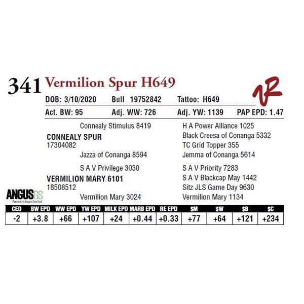 VERMILION SPUR H649