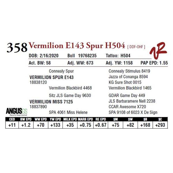 VERMILION E143 SPUR H504