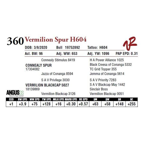 VERMILION SPUR H604