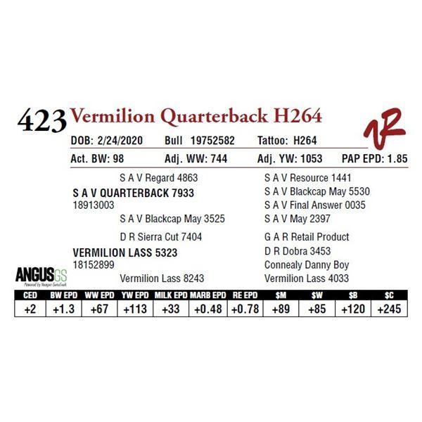 VERMILION QUARTERBACK H264