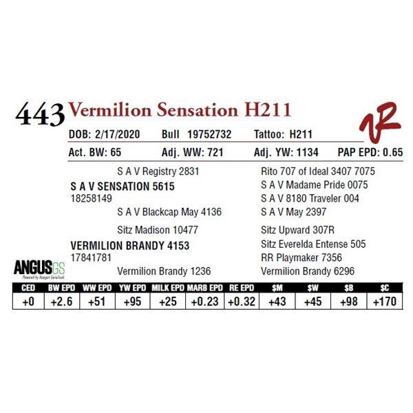VERMILION SENSATION H211