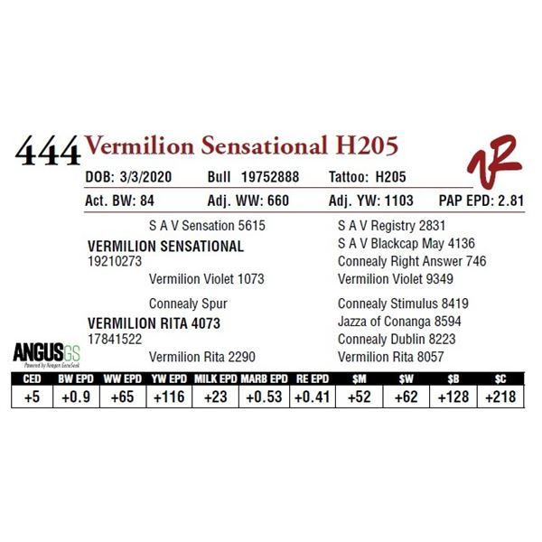 VERMILION SENSATIONAL H205