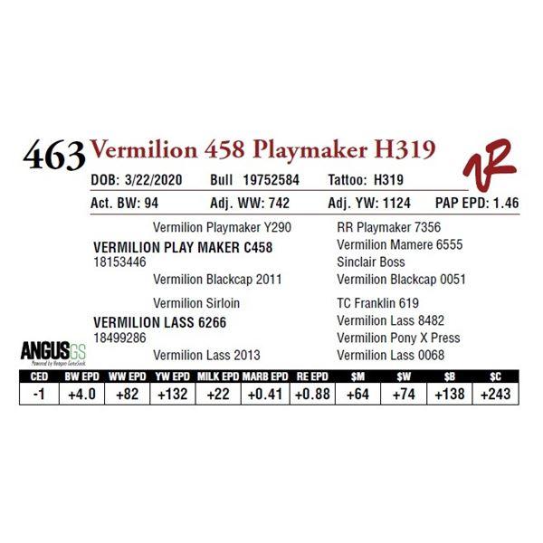 VERMILION 458 PLAYMAKER H319