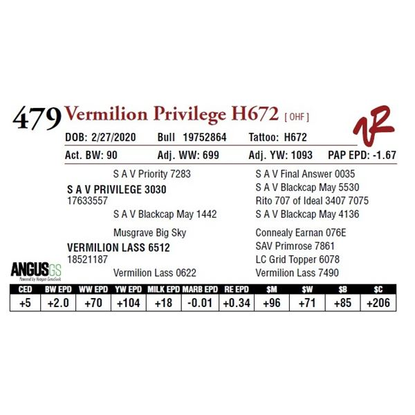 VERMILION PRIVILEGE H672
