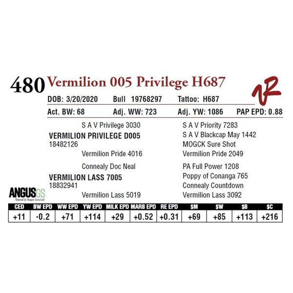 VERMILION 005 PRIVILEGE H687
