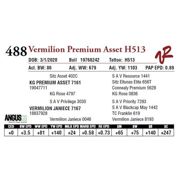VERMILION PREMIUM ASSET H513