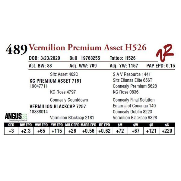 VERMILION PREMIUM ASSET H526