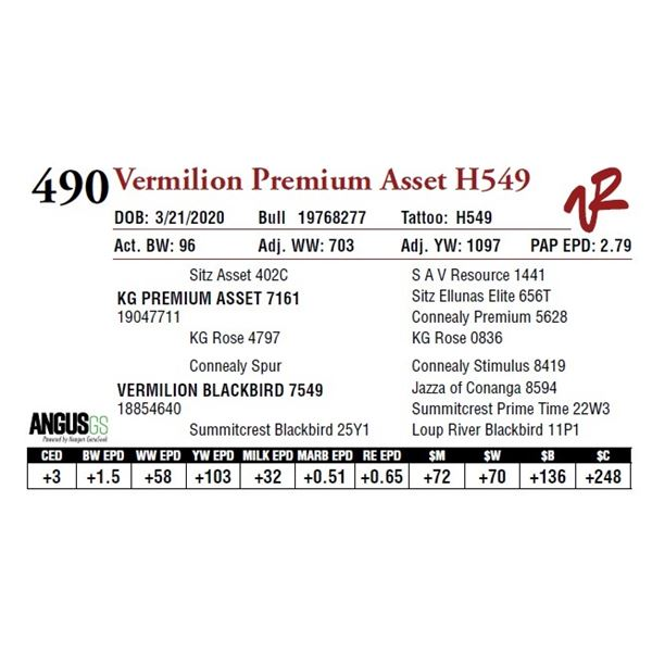 VERMILION PREMIUM ASSET H549