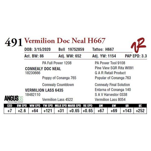 VERMILION DOC NEAL H667