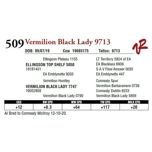 VERMILION BLACK LADY 9713