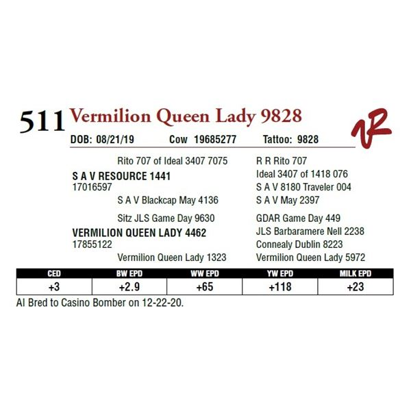 VERMILION QUEEN LADY 9828