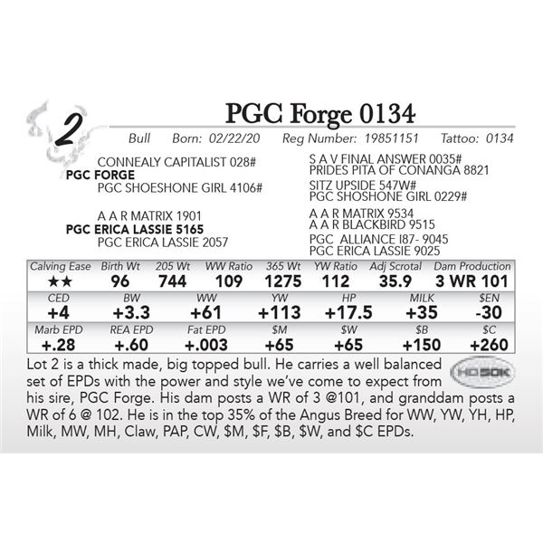 PGC Forge 0134