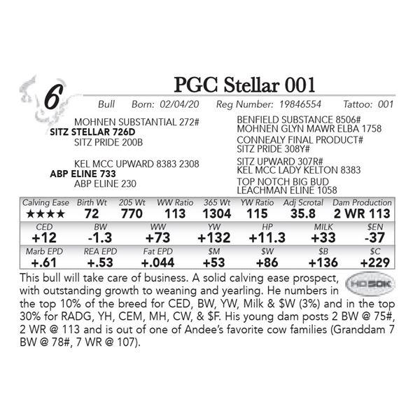 PGC Stellar 001