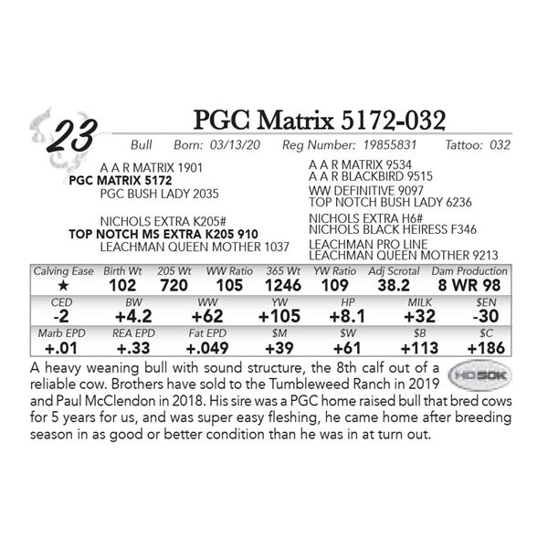 PGC Matrix 5172-032