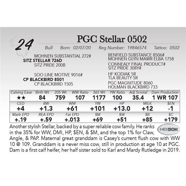 PGC Stellar 0502