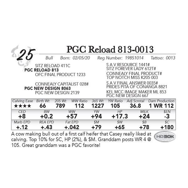 PGC Reload 813-0013