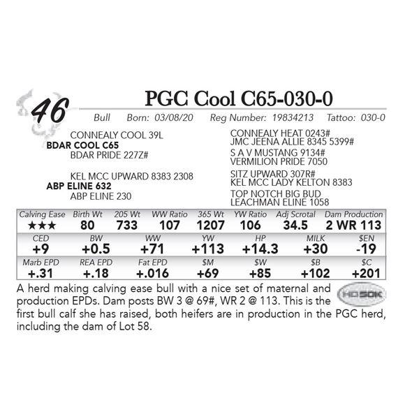 PGC Cool C65-030-0
