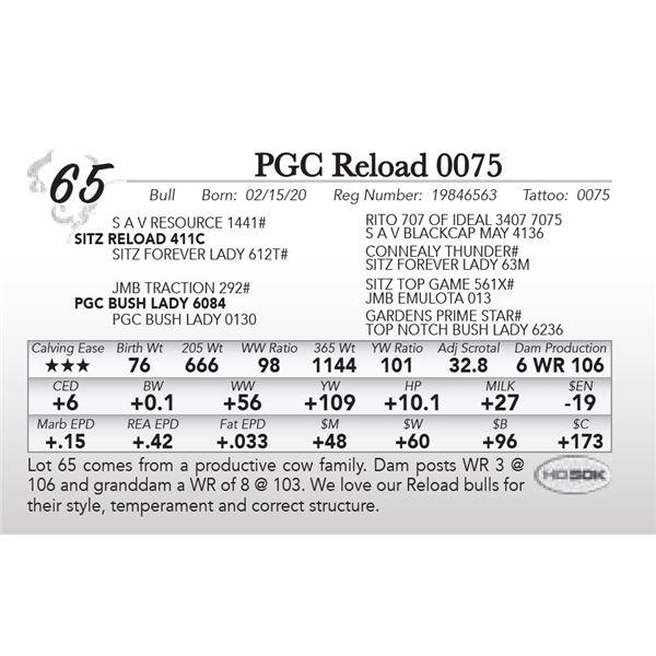PGC Reload 0075